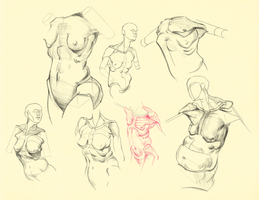 Hampton p.95-99: Pec Studies by theThirdCartel