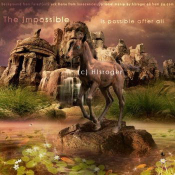 The Impossible Sept 16th 2010 by HlsRoger