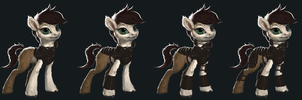 Equus at Arms by AssasinMonkey