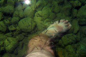 My Foot in the Lake by organicvision