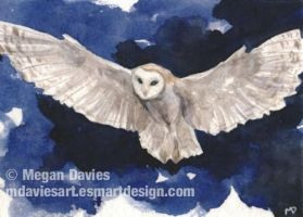 Barn owl in flight ACEO by Pannya