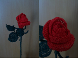 Red Rose by Syasthe