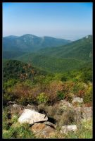 Shenandoah Overlook by Wivelrod