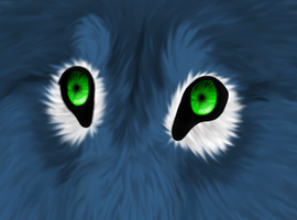 Realistic Practice :: Night Eyes by lucidcoyote