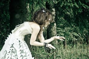 Coming after the white rabbit by Mersi-Shelly