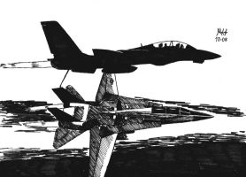 F14 Tomcats by DragonWolfACe