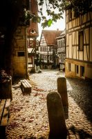 Herbst-Licht by Sudlice