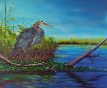 Great Blue Heron on the Ortega by tommyhawk13