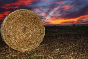 Bail of hay. by KevinJWilliams