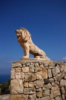 Lion wall by CAStock