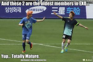 EXO Oldest Members MACRO by dancingdots