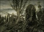 Just Another Scene From The Cemetery by Estruda