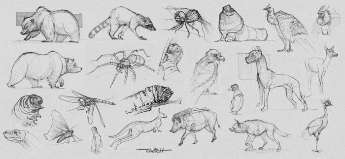 animal doodles by twitchx7