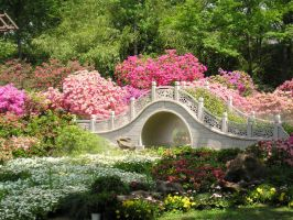 Garden and bridge by RipperBlackstaff