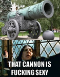 That cannon... by DumbledoreIsAmazing