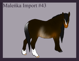 Malenka Import 43 by Alison-K