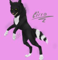 PC - Cirro by Toothie13