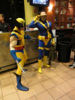 Wolverine and Cyclops by jeffry747
