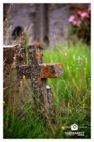 Resting Place by PicTd