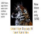 Global Tiger Day by IntergalacticAuthor
