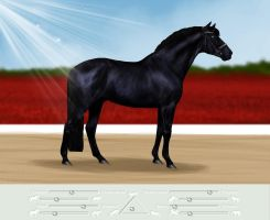 Demone GMS - Dutch Warmblood by SilviasDesires