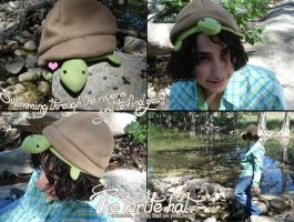 The Turtle Hat by silver-raindrops