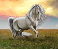 Silver Stallion by taasia