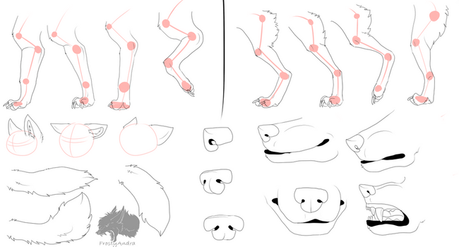 Tutorial paws, ears, tail, nose and mouth by FrostyAndra