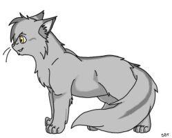 Graystripe of ThunderClan by StarlightWhispers