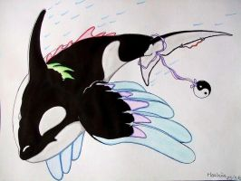 winged orca by Orca8