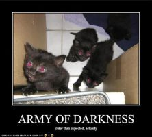 The Army of Darkness- Cat Style by MikalaLD