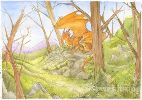 The Dragons Forest by theCoffeeDragon