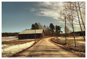 Spring Road by Pajunen