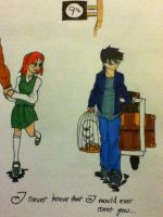 Harry and Ginny 1 by DAHalfblood