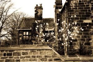Oakwell Hall by bassistchick