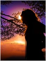 Silhouette by PhotoshopAddict89