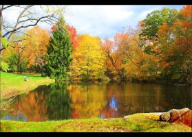 Martins Pond 2 by RoseBone