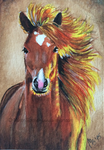 ACEO Horse by WitchiArt