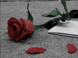 http://th01.deviantart.com/fs10/300W/f/2006/324/3/a/Letter_And_Rose_by_LovexTearsxBang.jpg