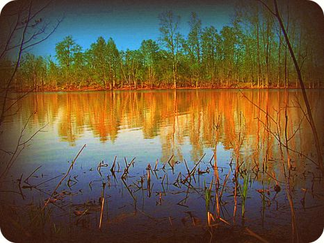 By The Lake In Spring by surrealistic-gloom