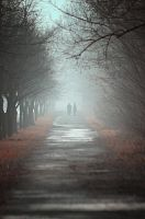 walk in the fog II by WiciaQ