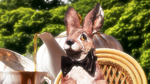 Marchhare [Sleeping Lullaby 2] by ElConsigliere