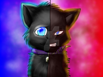 The Two Sides Of Me by Airokat