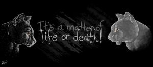 It's a Matter of Life or Death! by Viszla7