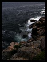 Acadia Otter Point Print by trashydragon