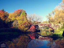 Bridge to Autumn. by Littography