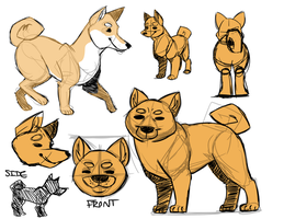 shiba inu model sheet by snaximation