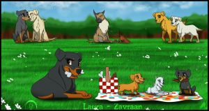 A beautiful afternoon by zavraan