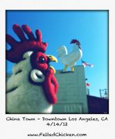 Felted Chicken Head in China Town by AlwaysSuagarCoated