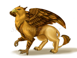 A Griffin by Starwarrior4ever